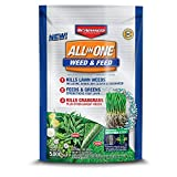 BioAdvanced All-in-One Weed & Feed with Microfeed Action,...