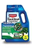 BIOADVANCED 701910A 12-Month Tree and Shrub Protect and Feed...