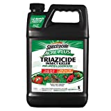 Spectracide 1-Gallon Acer Plus Triazicide Insect Killer for...