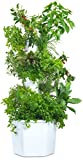 Aerospring 27-Plant Vertical Hydroponic Outdoor Growing...