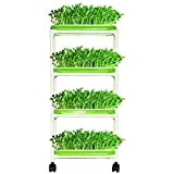 4 Layers Sprout Trays with Extra Strength Plastic Shelf...