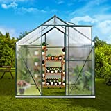 JULY'S SONG 6'x8' Greenhouse,Polycarbonate Walk-in Plant...