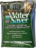 WaterSaver Grass Mixture with Turf-Type Tall Fescue Used to...