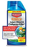 BioAdvanced 704140 All-in-One Lawn Weed and Crabgrass Killer...