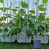 Solar Power Hydroponics Growing System,Big Hydroponic...