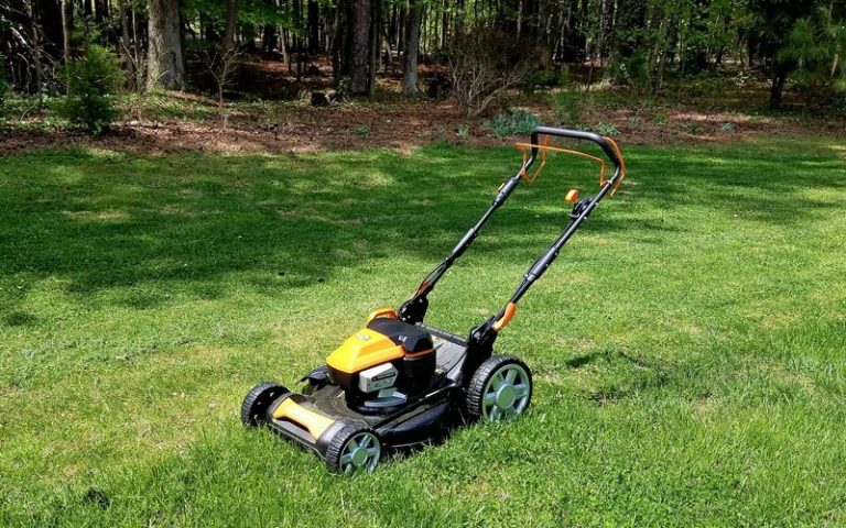Best Push Mower Under $300 Review and Buying Guide