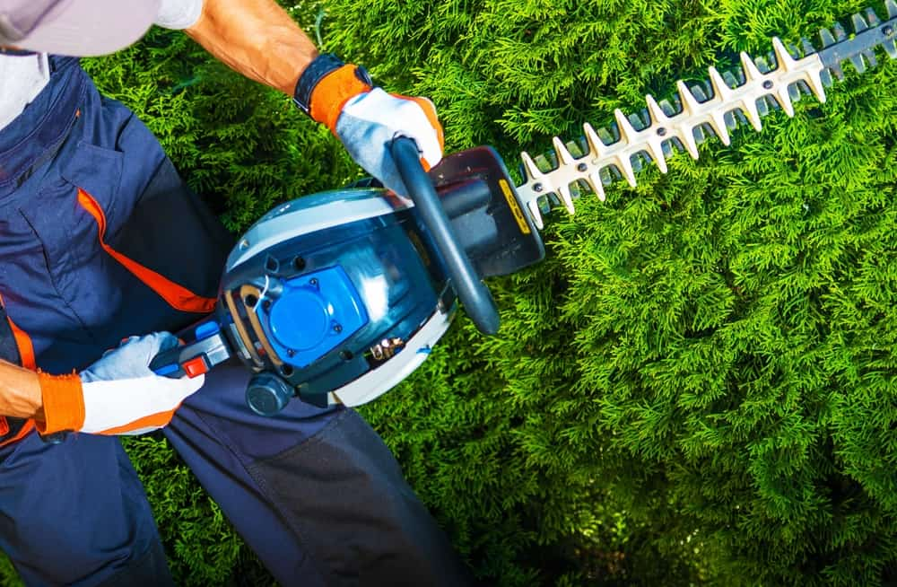 Guides and Tips on How to Use a Hedge Trimmer Safely
