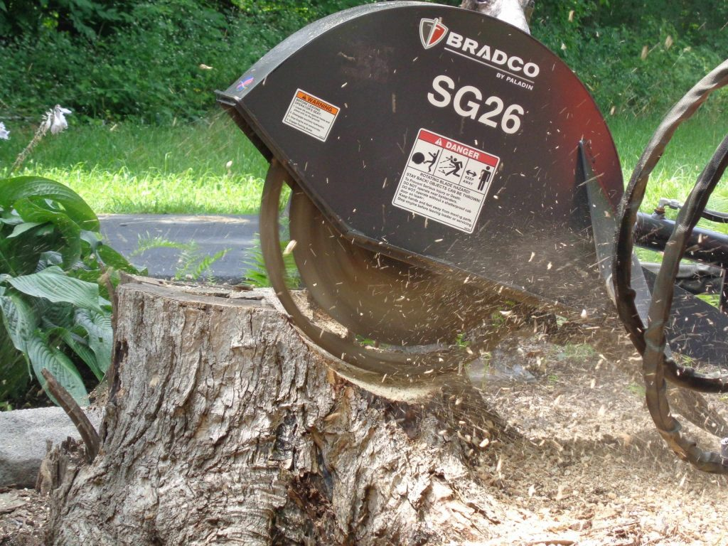 Best Stump Grinder Review and Comprehensive Buying Guide