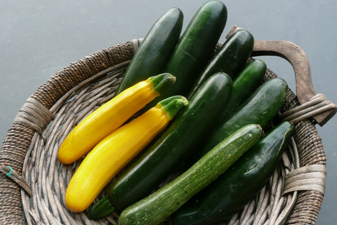The Ultimate Guide to Companion Planting Vegetables, Fruits, and Flowers