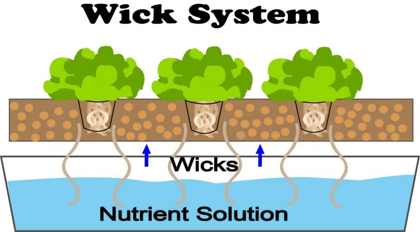 Hydroponic Wick System Garden Guide