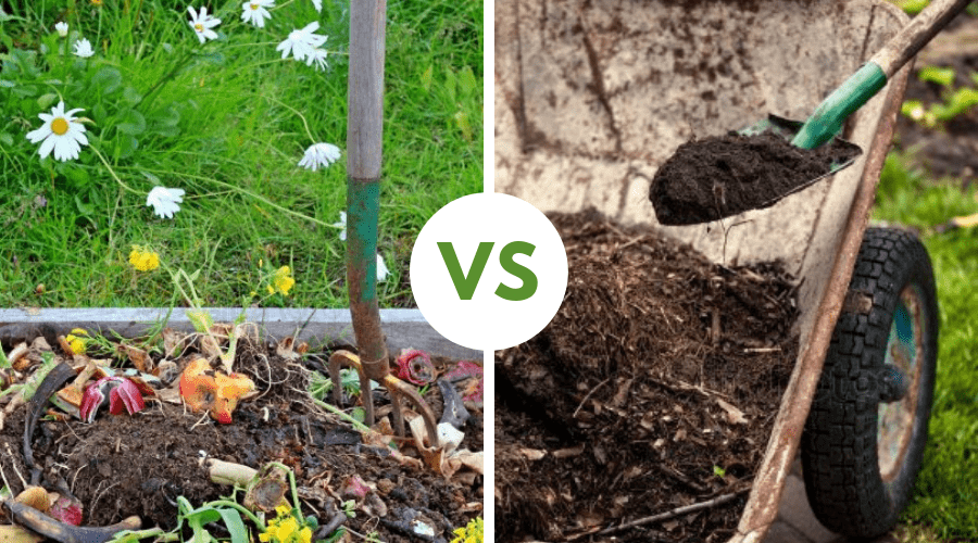 Compost vs Mulch - What is the Difference Between Compost and Mulch?