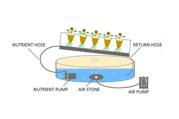 Best Air Pump for Hydroponics System 2020