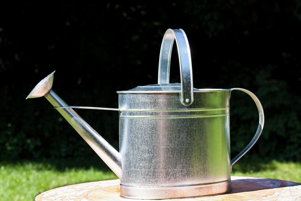 Choosing the Best Watering Can: Plastic Watering Can & Stainless Steel Watering Can Buying Guide