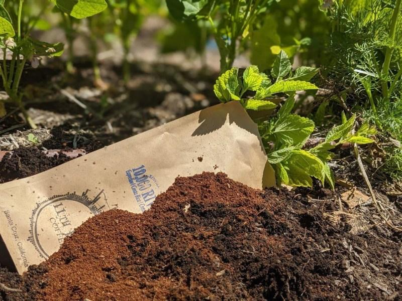 How to Compost Coffee Grounds (for Garden Fertilizer)