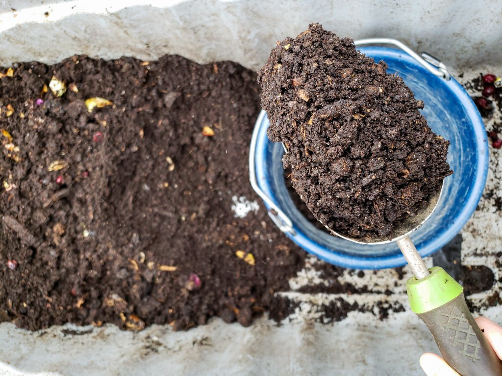 DIY Worm Composting For Beginners: How to Start Vermicompost and Process