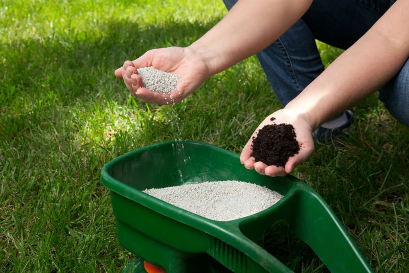 Best Weed and Feed Fertilizer for Grass Lawns (Spring, Summer, Fall & Winter)
