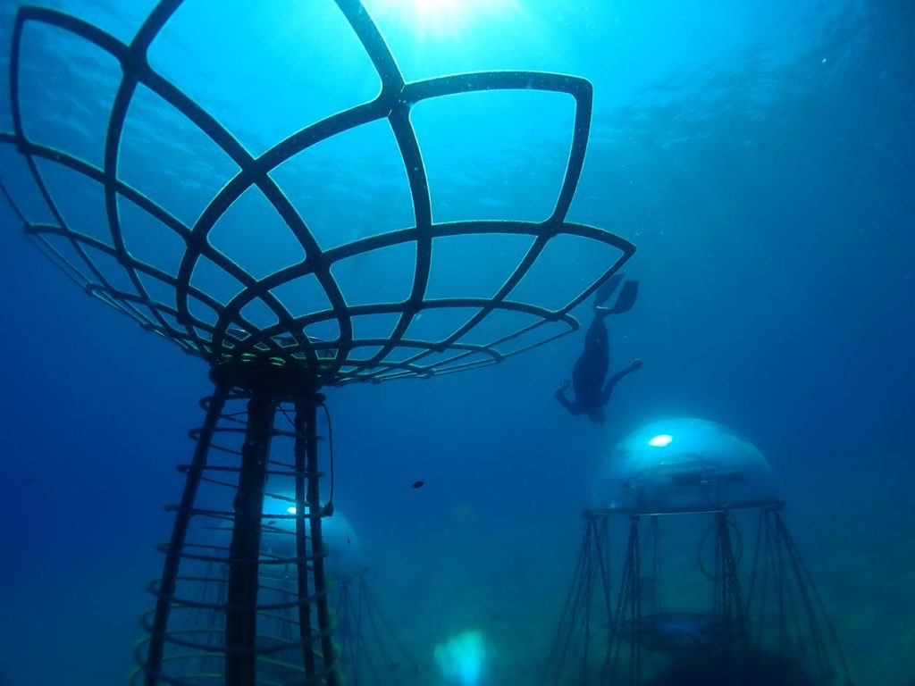 An Overview Of Underwater Agriculture
