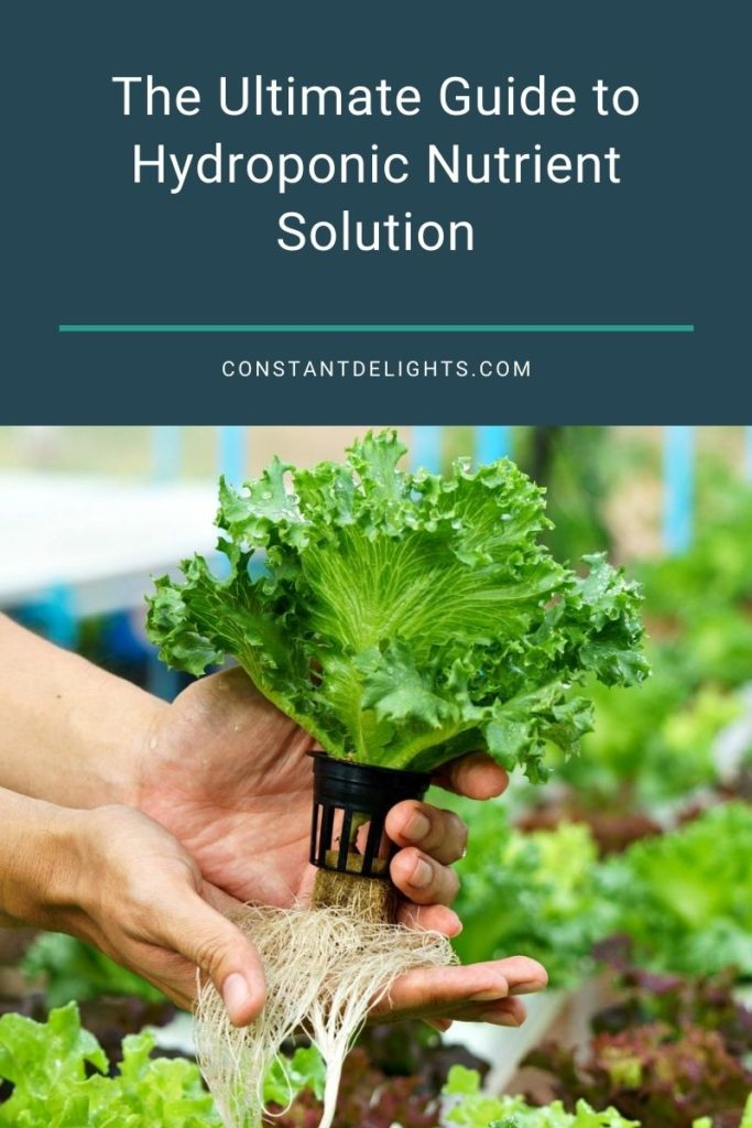 The Ultimate Guide to Hydroponic Nutrient Solution
