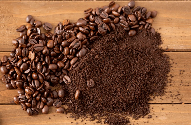 Are coffee grounds good for plants?