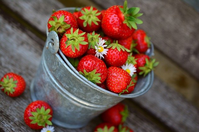 Best Fertilizer For Strawberries: A Complete Guide