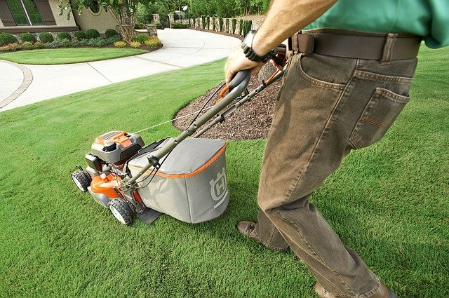 When and How often to fertilize lawn (Best time & Schedule)