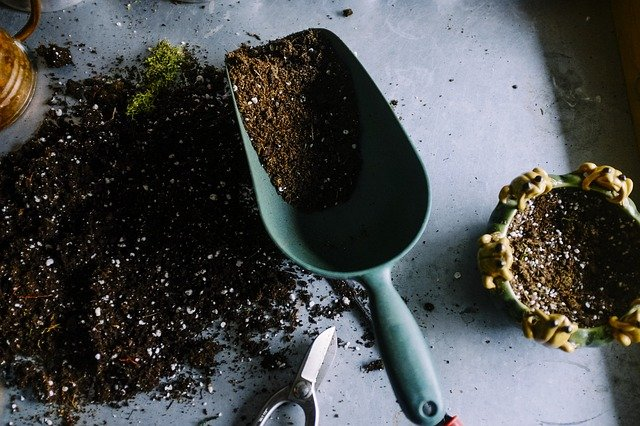 How To Test & Check Soil pH