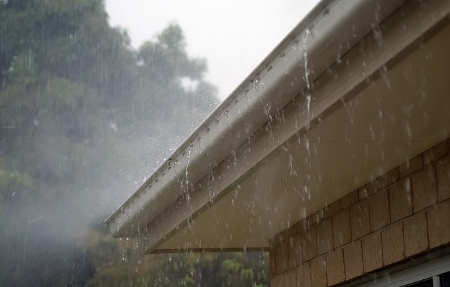 Everything you need to know about gutter cleaning