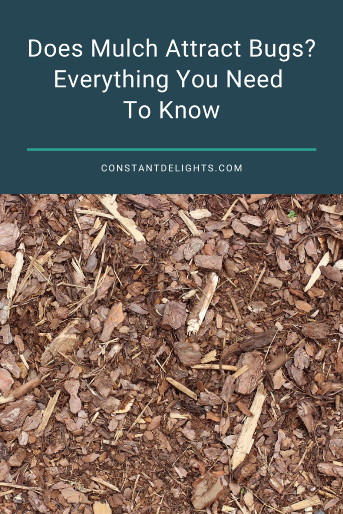 Does Mulch Attract Bugs? Everything You Need To Know