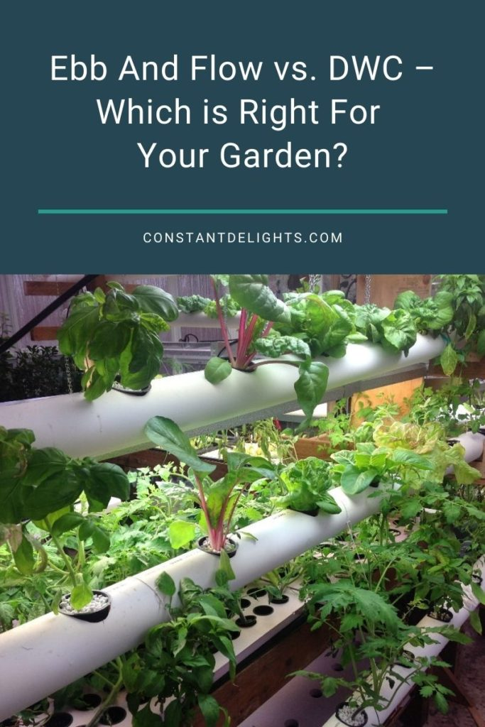 Ebb And Flow vs. DWC – Which is Right For Your Garden?