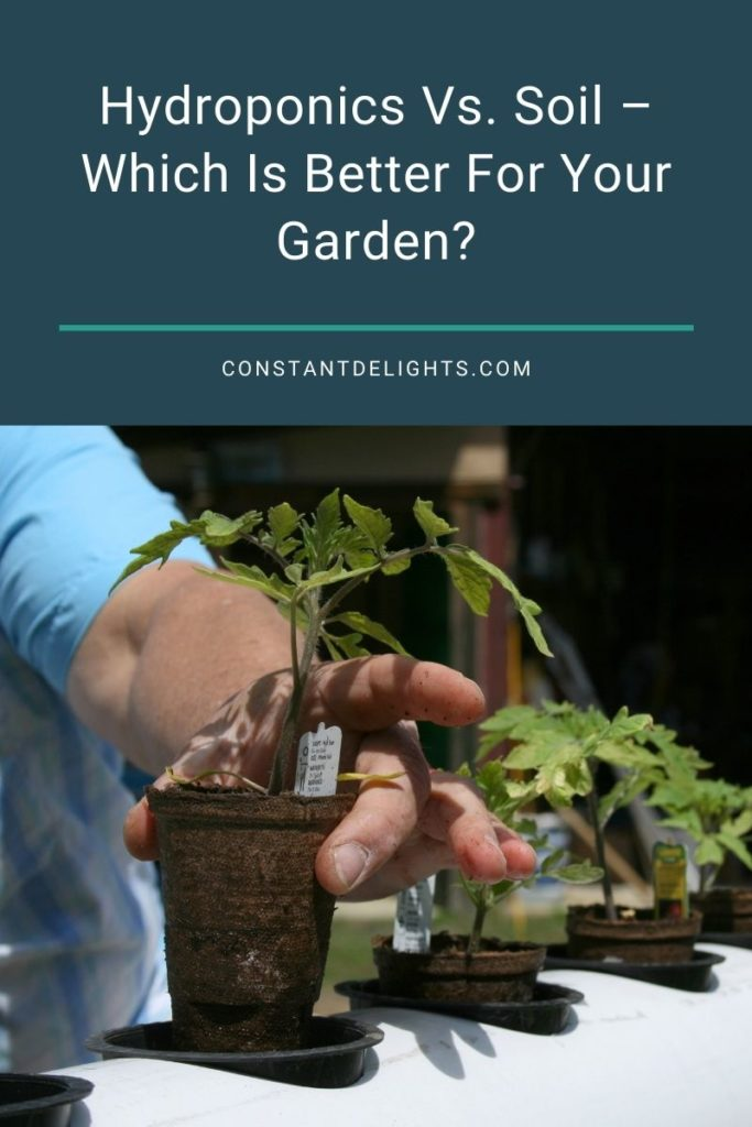 Hydroponics Vs. Soil – Which Is Better For Your Garden?
