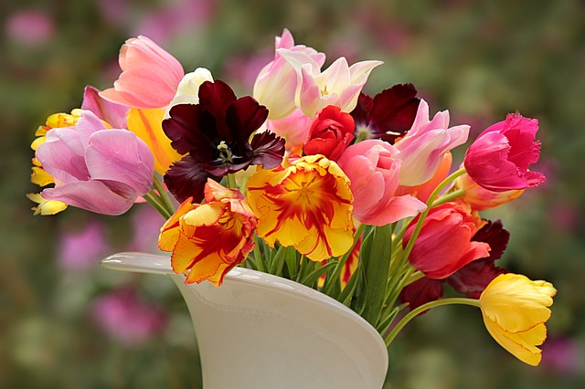 11 Ways to Keep Your Cut Flowers Fresh (Expert Recommendations)