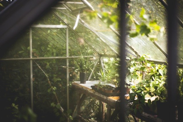 7 Best Greenhouse Kits And Buying Guide