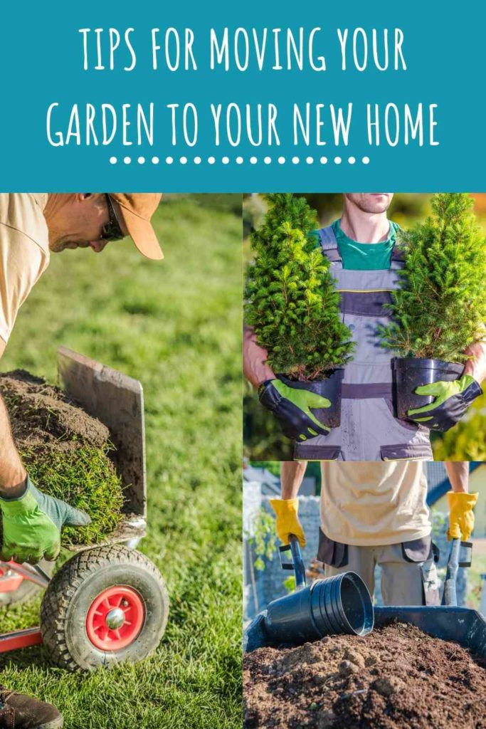 Tips For Moving Your Garden To Your New Home