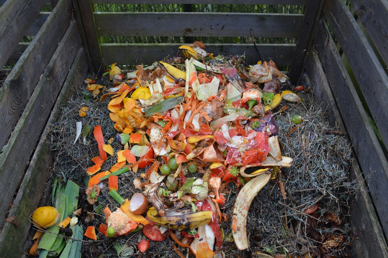 Top 7 Best Bagged Compost Reviews In 2021 & Buying Guide