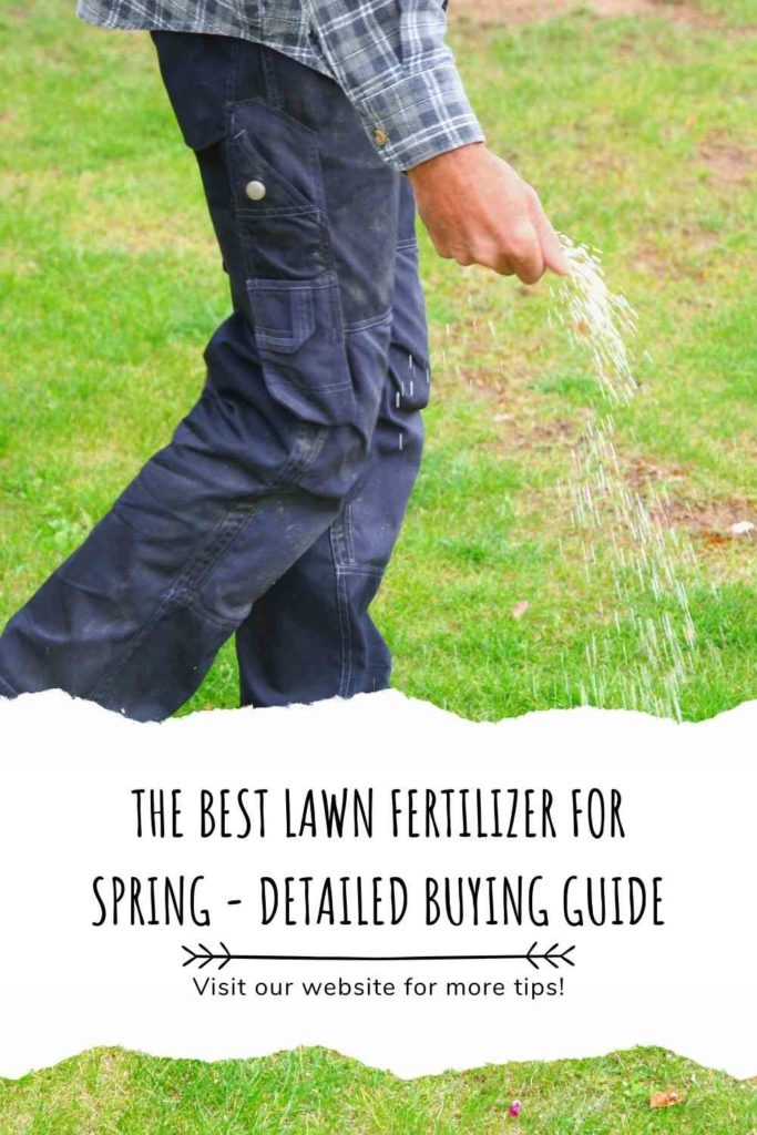 The Best Lawn Fertilizer For Spring - Detailed Buying Guide