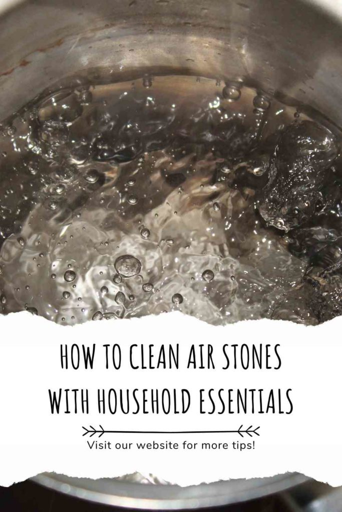 How To Clean Air Stones With Household Essentials