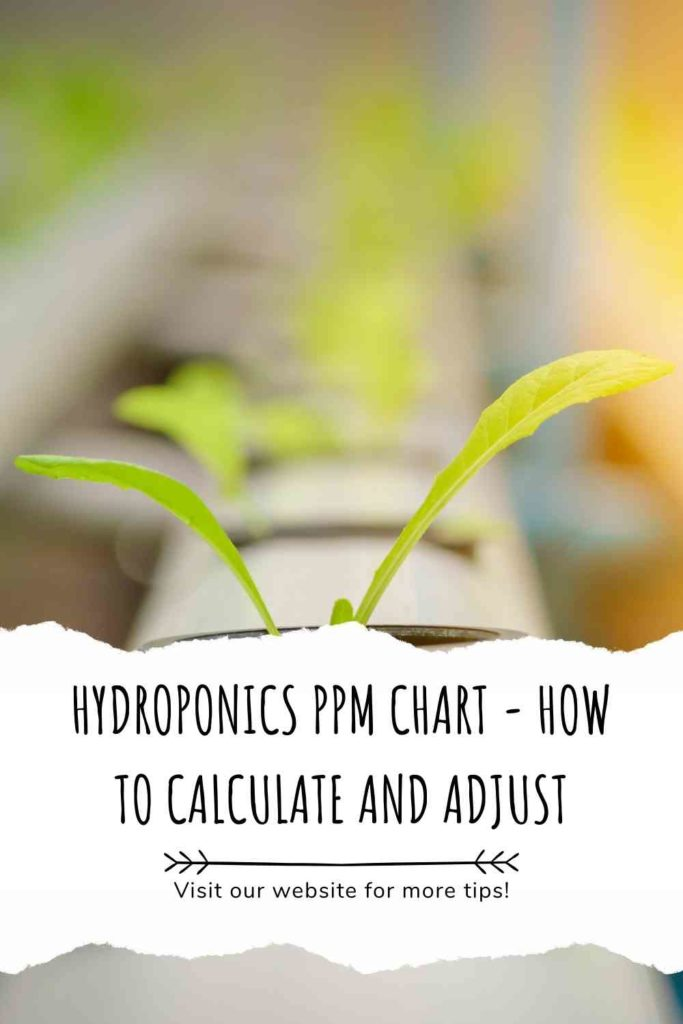 Hydroponics PPM Chart - How To Calculate And Adjust